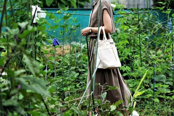 野菜をおしゃれに持ち運び、保存もできるバッグ