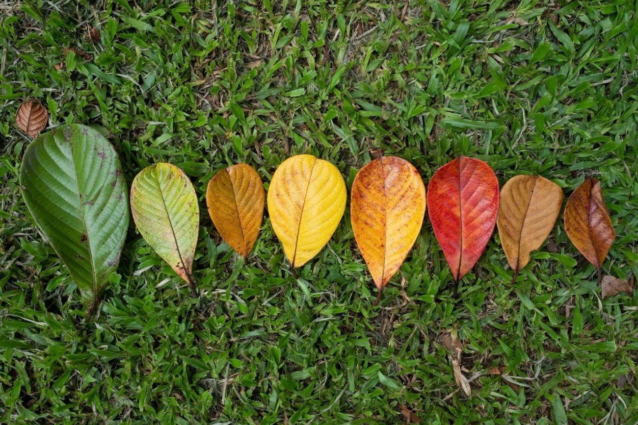 秋分の日は季節の変わり目の日