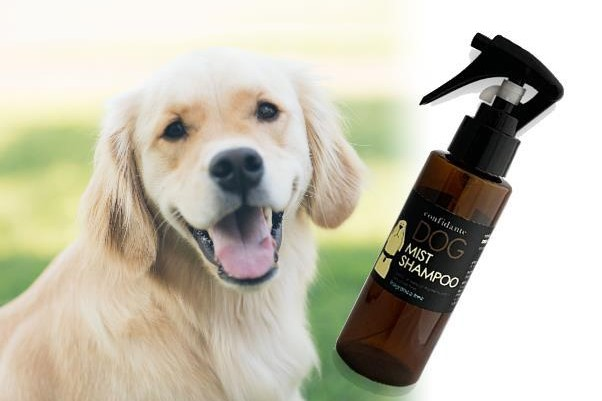洗い流さない犬用ミストシャンプー