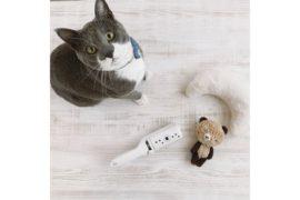 便利グッズで猫も飼い主も快適