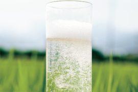 日本酒の新しいカタチ。爽やかな喉ごしを楽しむ日本酒ハイボール
