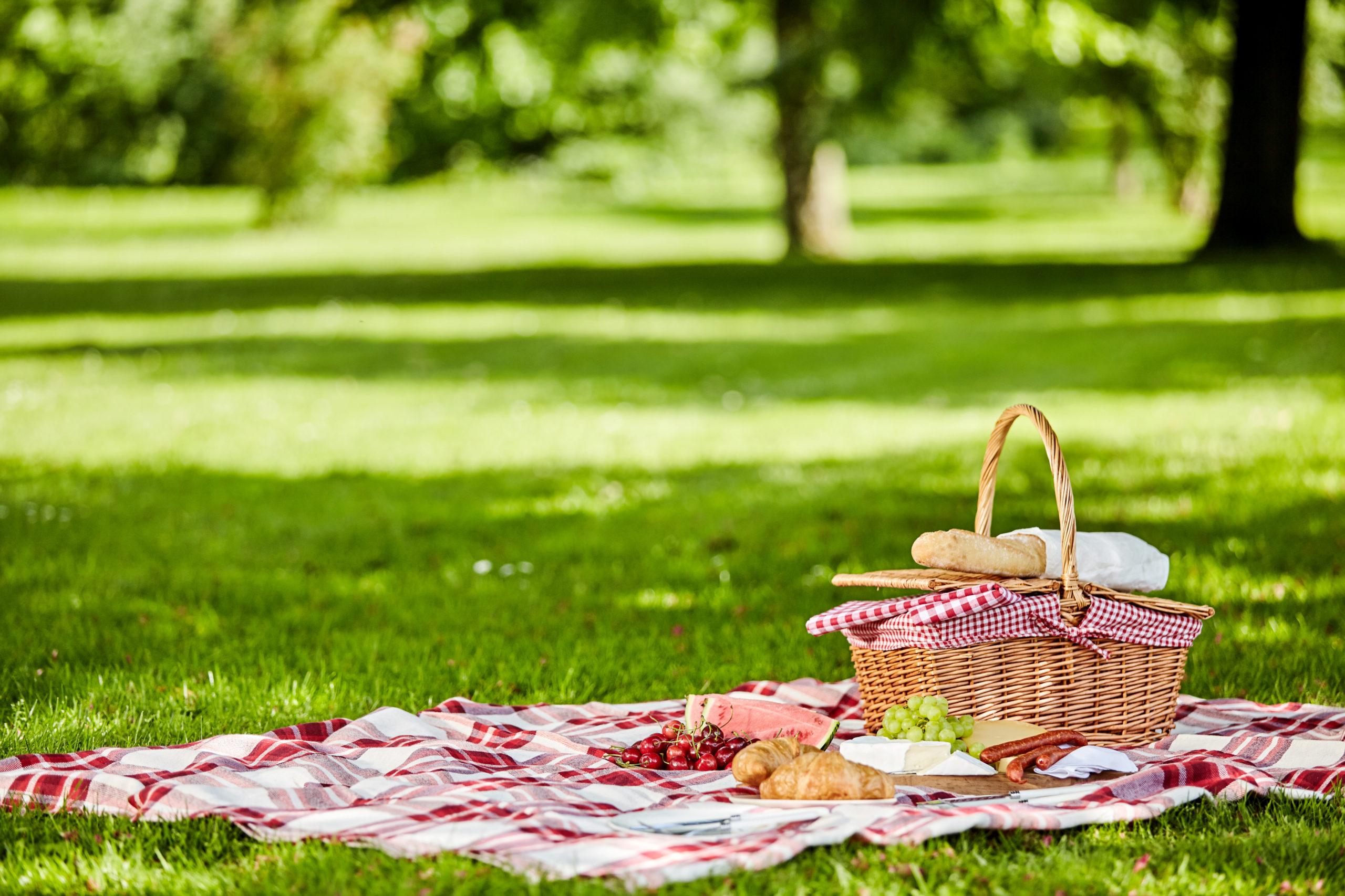 秋の公園ピクニック