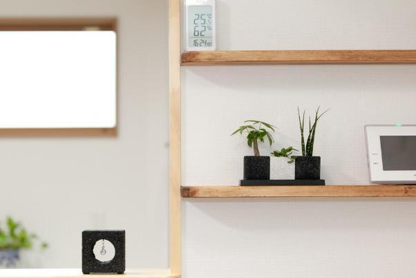 観葉植物でお部屋を快適に