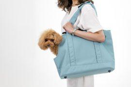 愛犬と一緒にお出かけ。どんなキャリーバッグを選ぶ