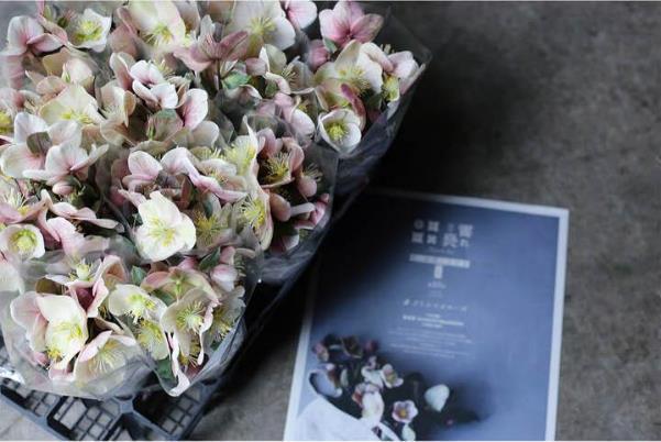 花を飾ることで心に潤いを