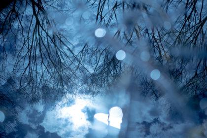 水たまりに映る風景