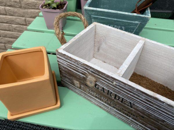 木の器と普通の鉢植え