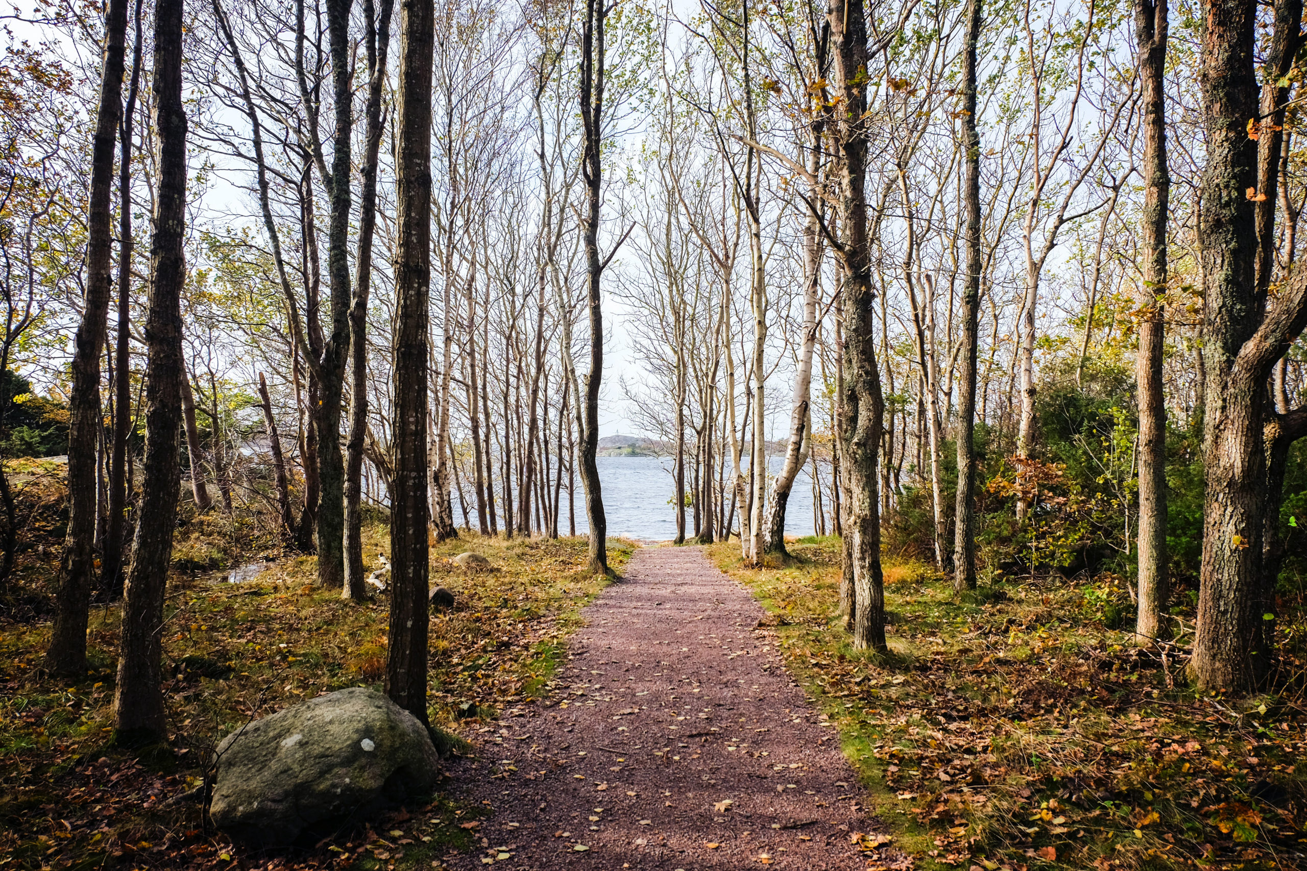 北欧の豊かな自然