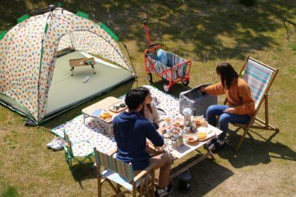 休日は庭先でのんびり。帆布と天然木のアウトドアチェア