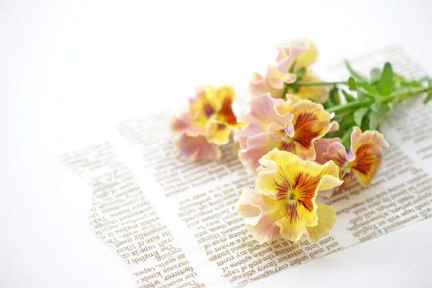 切り花の持ちは季節によって変わる