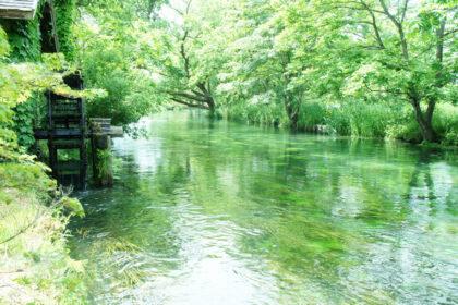 日本の豊かな水資源を守るため、私たちができること